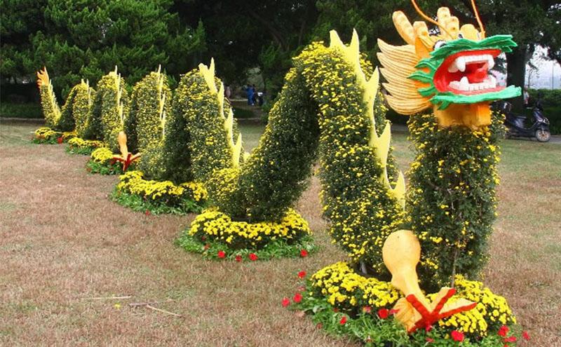 双龙戏珠菊花造型