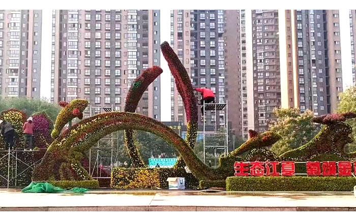 湖北武汉-生态江夏,菊颂金秋大型五色草造型雕塑