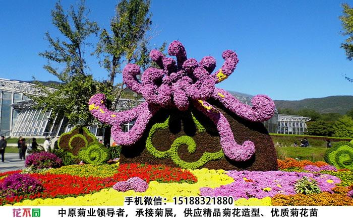 以菊花为主题的菊花造型