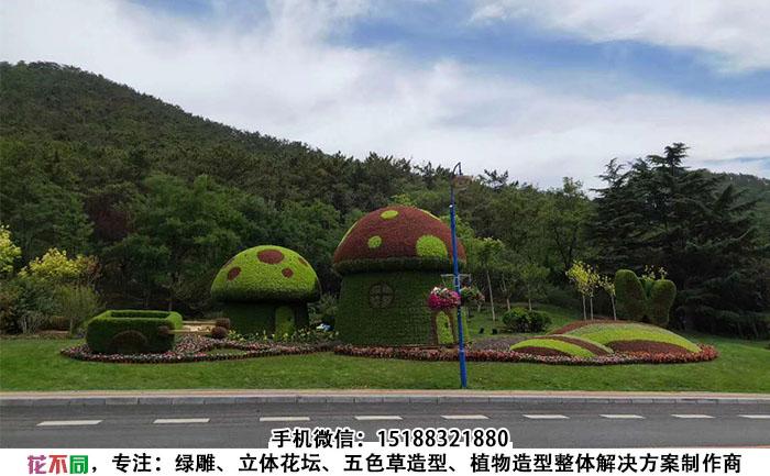 济南动画城创意立体花坛现场实拍图