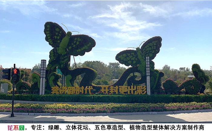 蝶语花香植物立体花坛日间实拍图