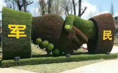 四川汶川建军节植物绿雕