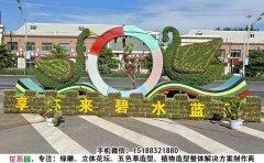 河北张家口国庆植物绿雕定制