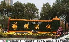 江西菊花文化节布展