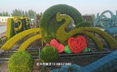 植物绿雕用什么花土
